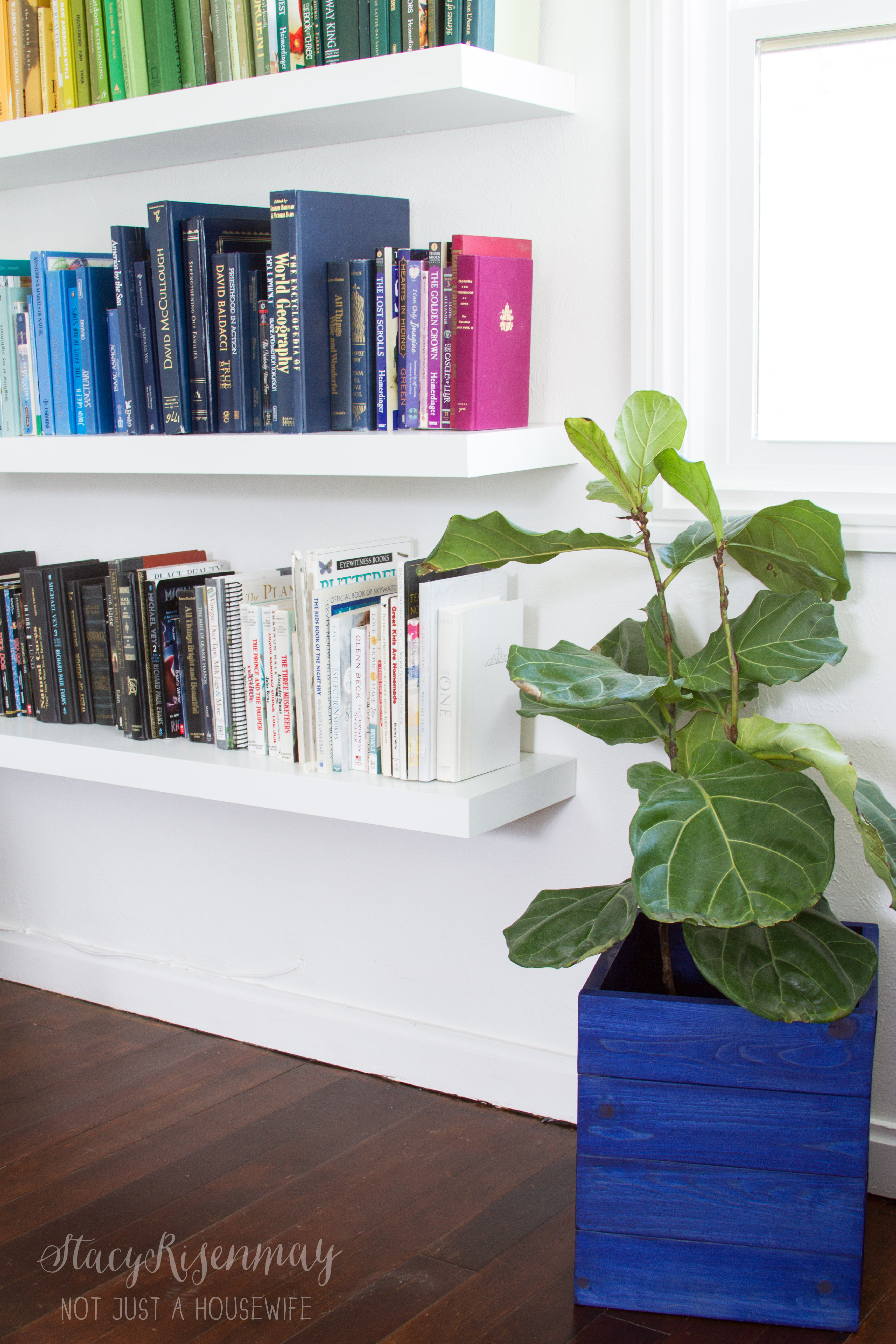 blue crate planter in living room