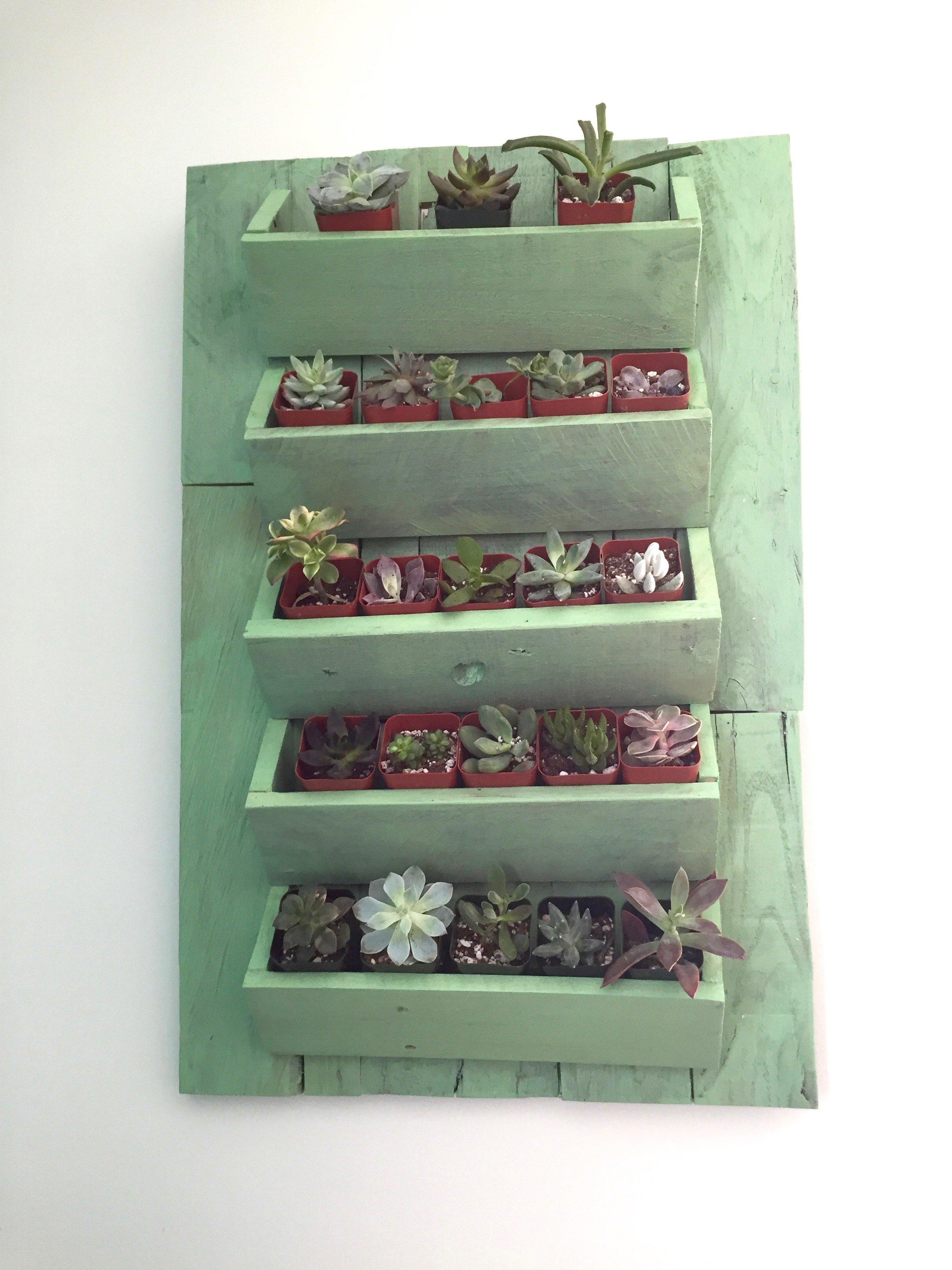 16b-after-Minwax-Succulent-Pallet-Wood-Wall-Art