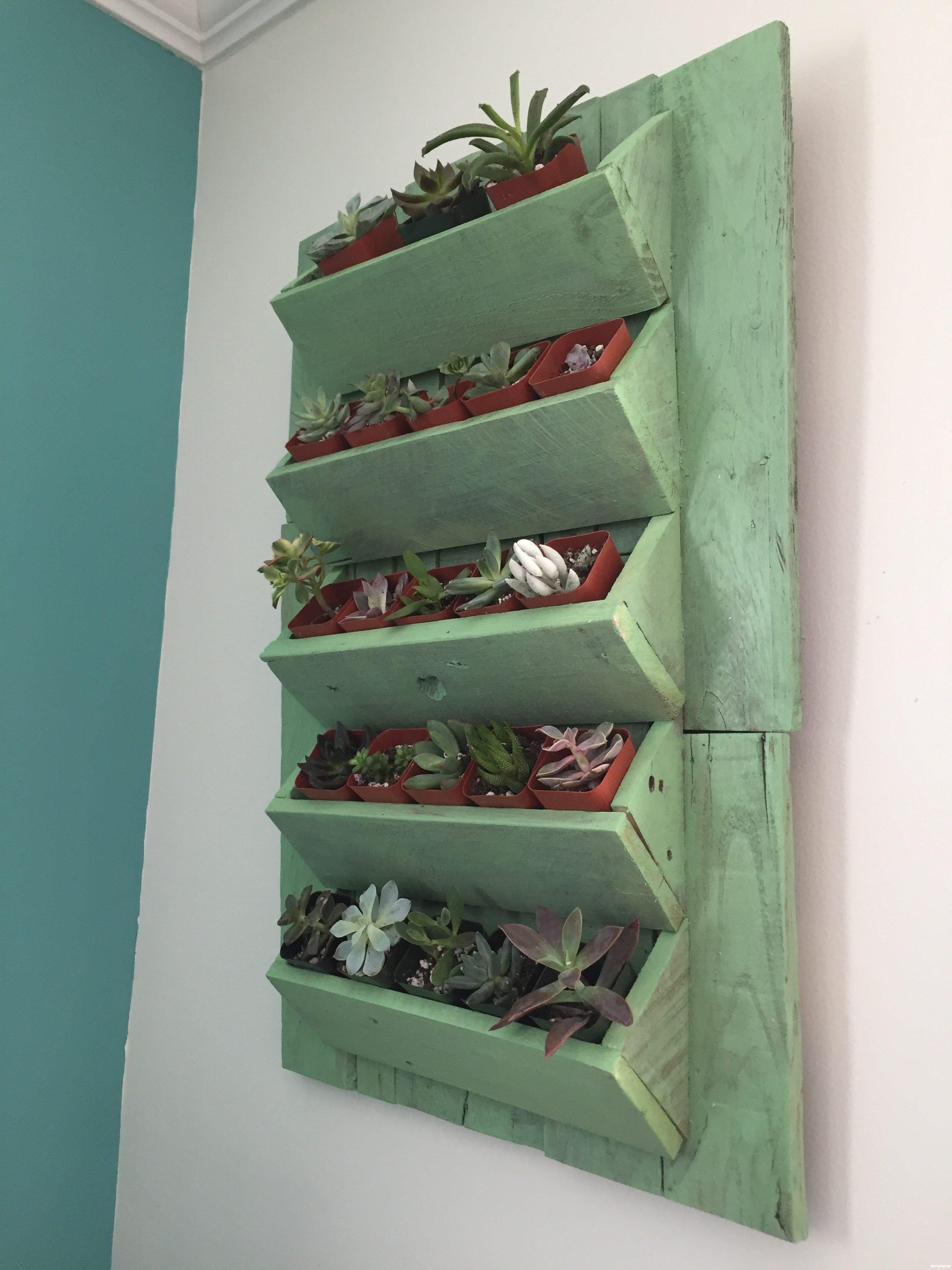 16f-Minwax-Succulent-Pallet-Wood-Wall-Art-e1487787068146