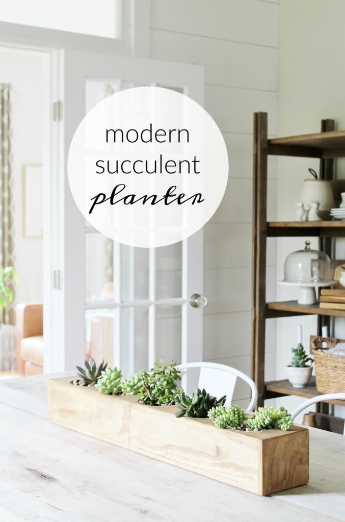 Modern-Succulent-Planter-677x1024
