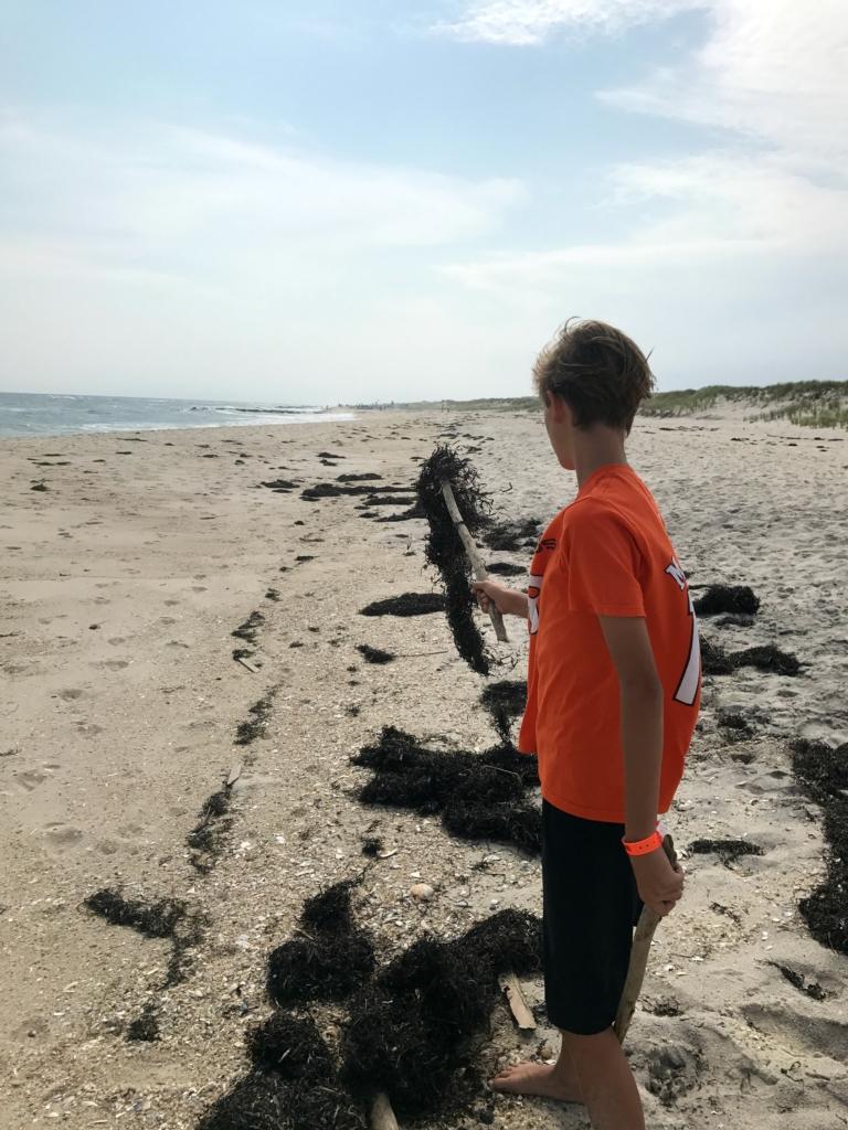 beach-9-768x1024