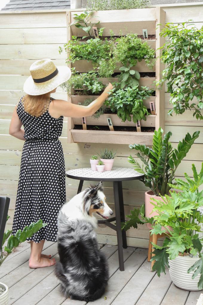 ispydiy_vertical_herb_garden10