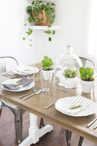 White Dishware & Green Plant Decór for Springtime